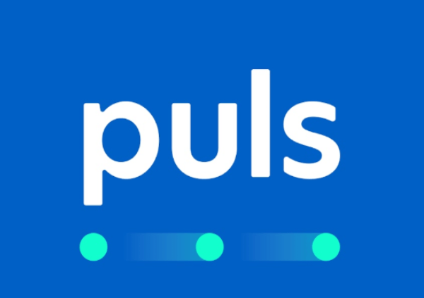 Why You should Patronize Puls for Home Maintenance Services