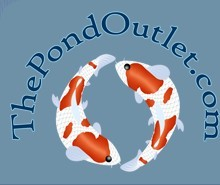 The Pond Outlet Coupon