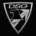 DSG Arms free shipping coupons