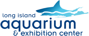 Long Island Aquarium Promo Codes