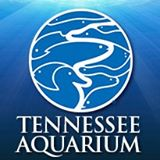 Tennessee Aquarium Coupon