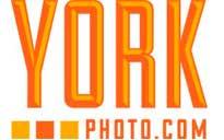 York Photo free shipping coupons