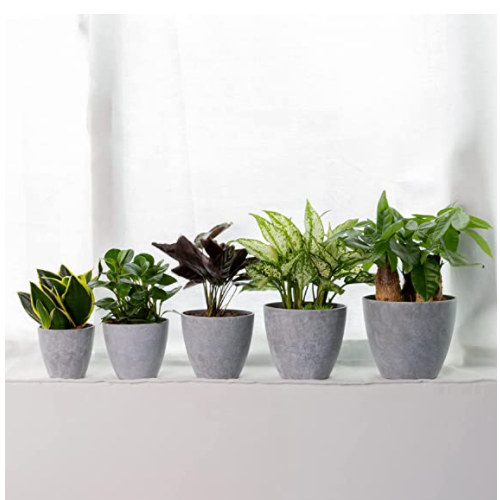 Large Plastic Planters Plant Pots - MAYZBO 7.5/6.7/6/5.3/4.6 Inch Nordic Industry Style Indoor Heavy Duty Decorative Imitation Cement Pattern Garden Flower Pots with Drainage Hole