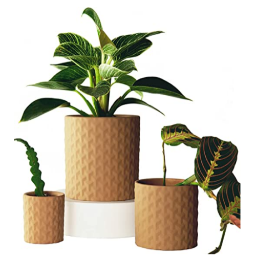 TABLE FOREST Plant Pots , ,Set of 3 50% off