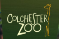 Colchester Zoo free shipping coupons
