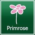 Primrose promo code