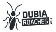 Dubia Roaches Promo Codes