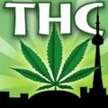 Toronto Hemp Company promo code