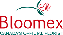 BloomEx free shipping coupons