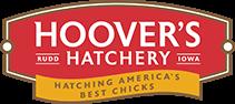 Hoover's Hatchery promo code