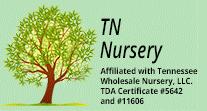 Tn Nursery