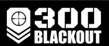 300 Blackout Promo Codes