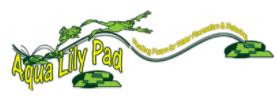 Aqua Lily Pad
