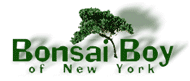 Bonsai Boy Coupon Code