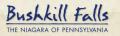 Bushkill Falls Coupon