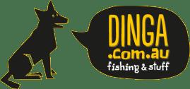 DINGA Discount Code
