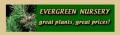 Evergreen Nursery Coupon