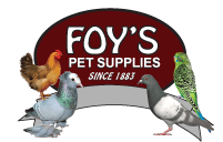 Foy's Pigeon Supplies Promo Codes