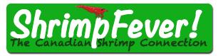 Shrimp Fever