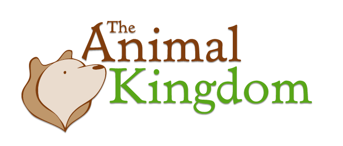 The Animal Kingdom promo code