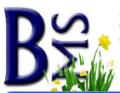 BMS promo code