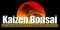Kaizen Bonsai Discount Codes