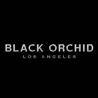 Black Orchid Denim