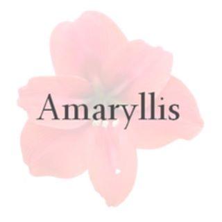 Amaryllis Apparel Promo Codes