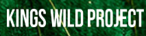 Kings Wild Project Discount Code