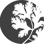 Nutra Organics promo code
