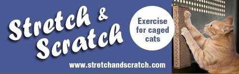 Stretch and Scratch Coupon