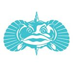 Toadfish Outfitters free shipping coupons