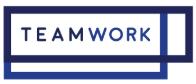 Teamwork promo code