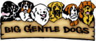 Big Gentle Dogs Coupon Code