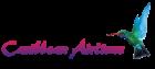 Caribbean Airlines promo code