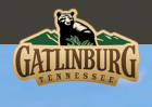 Gatlinburg free shipping coupons